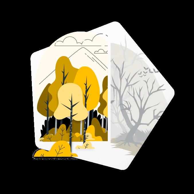 Bild von zwei Wäldern: einer abgestorben und grau, der andere blühend und bunt